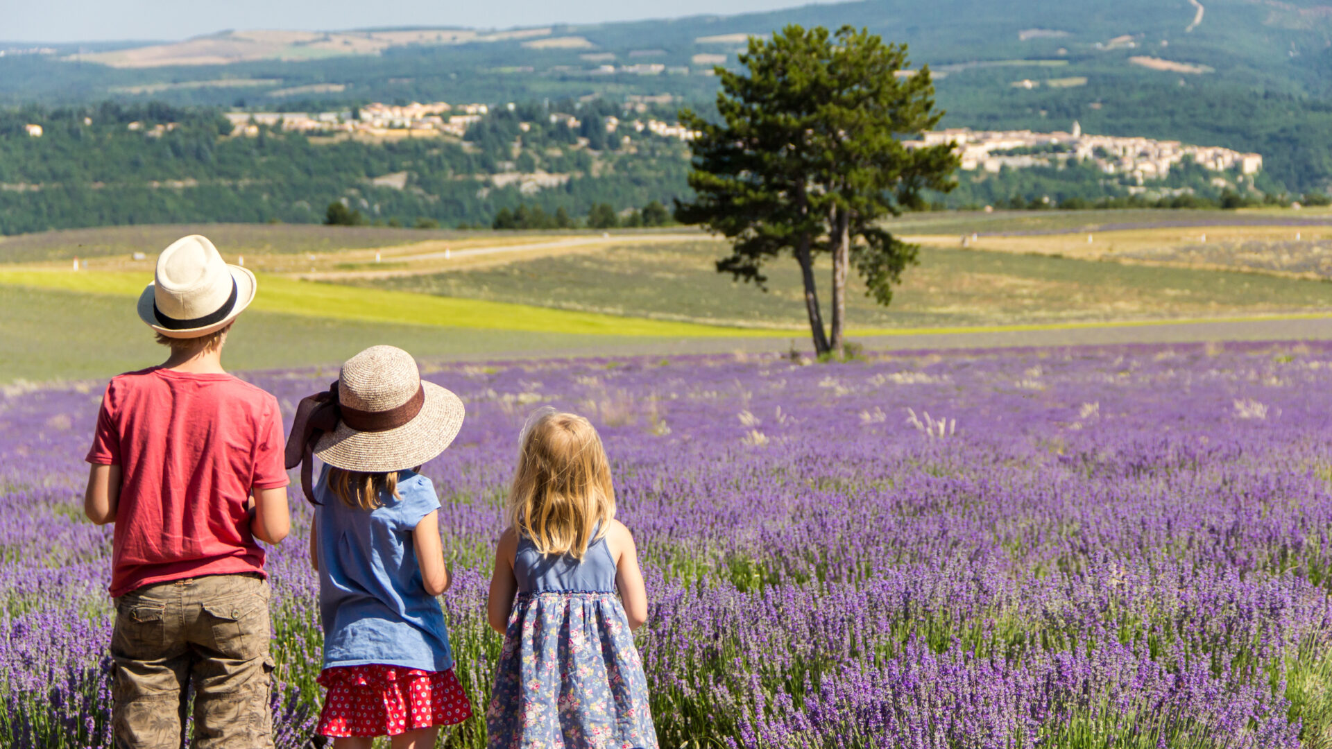 Three children standing in the middle of lavender fields looking at a village in the valley