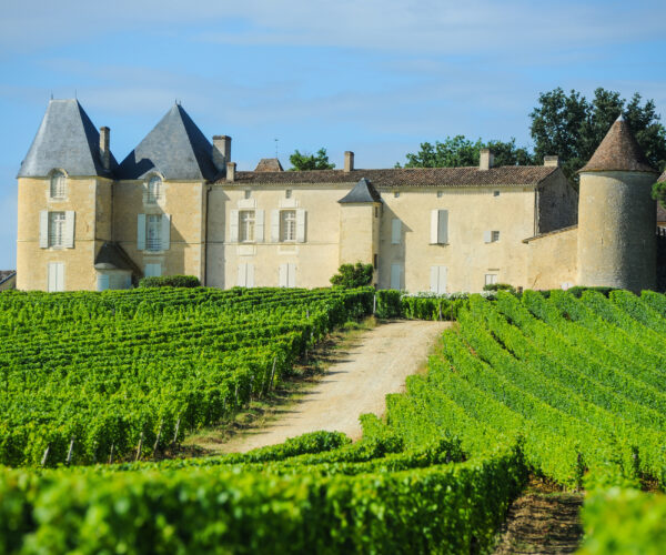 The Chateau d'Yquem and its vineyards in the Bordeaux wine area of Sauterne