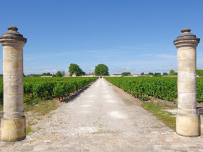 Private wine domain and vineyards in Bordeaux