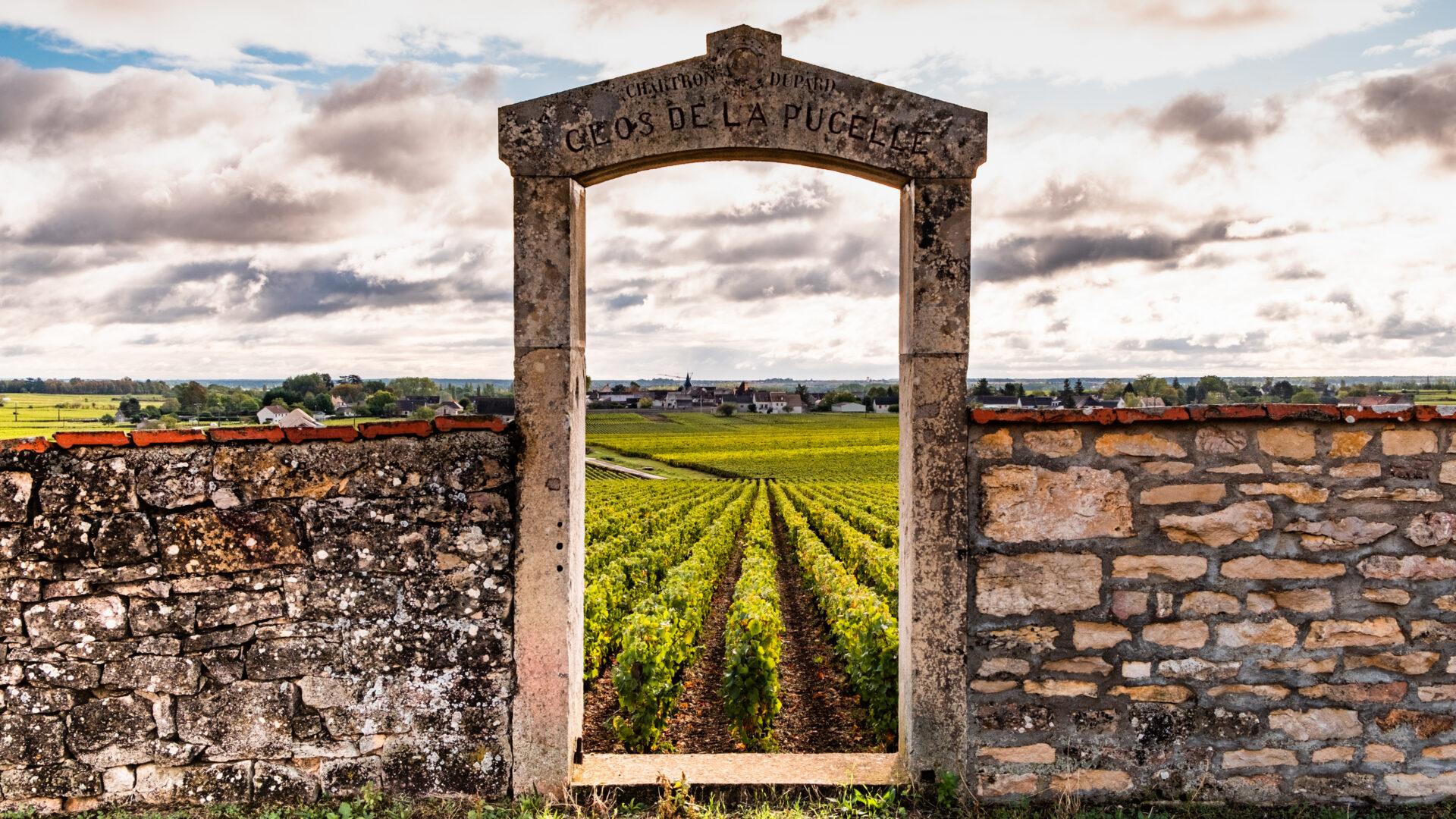 Doorway to a vineyard in Burgundy