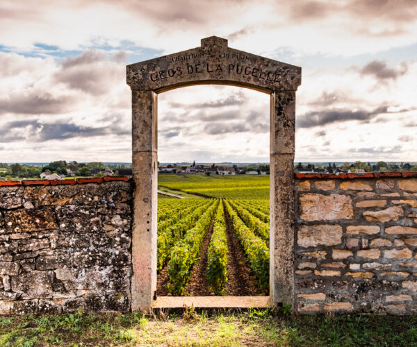 Doorway to a vineyard in Burgundy