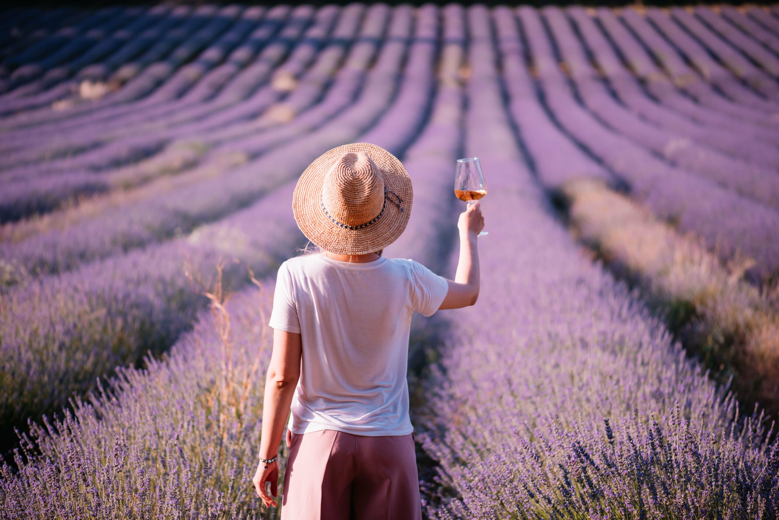 Wine tasting overlooking a lavender field in Provence